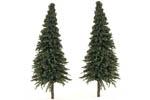 Pine Trees - Medium (20 Pack)