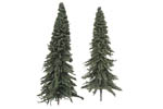 Pine Trees - Large (10 Pack)