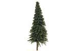 Pine Trees - Medium (4 Pack)