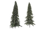 Pine Trees - Large (3 Pack)