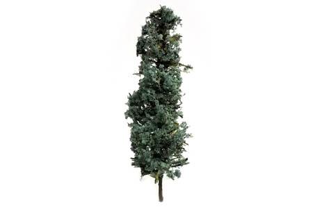 Spruce Trees - Medium (10 Pack)