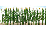Corn Stalks (30 Pack)