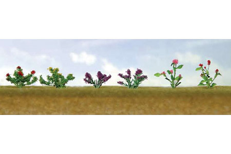 Assorted Flower Plants #1 (12 Pack)