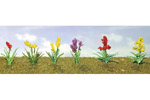 Assorted Flower Plants #2 (12 Pack)