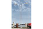 Double-Arm Tear Drop Street Lamp