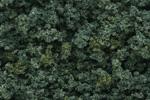 Underbrush - Medium Green