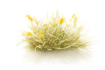 Seeding Tufts - Yellow